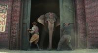 Воды слонам (рус. трейлер)
