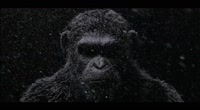 Война за планету обезьян